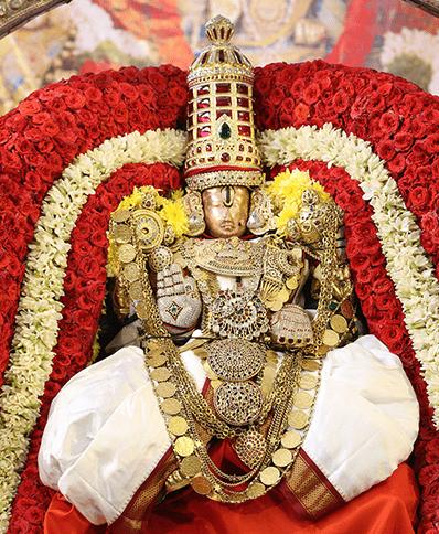సూర్యప్రభ వాహనంపై గోవిందరాజస్వామి