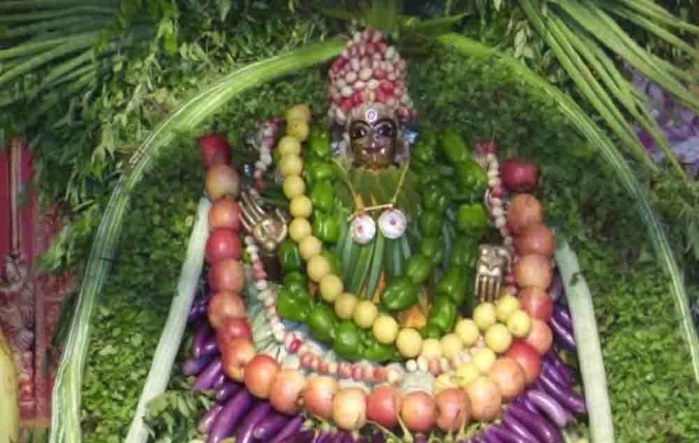ఇంద్రకీలాద్రిపై శాకాంబరీ ఉత్సవాలు ప్రారంభం