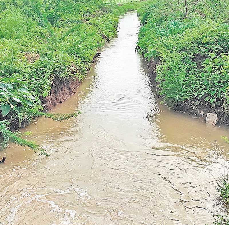 సంస్థాన్నారాయణపురం మండలంలో అత్యధికంగా 36.2 మీమీ