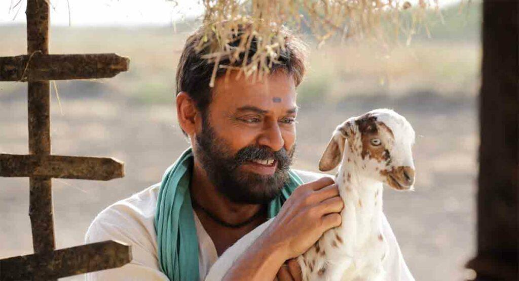 Narappa Review : రొటీన్ రీమేక్..